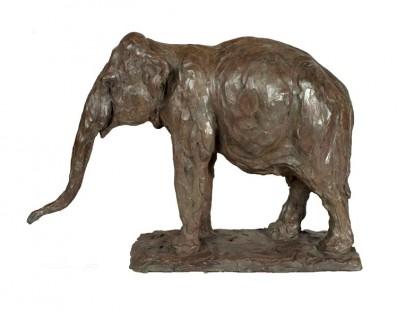 elephant  340 x 500 x 173