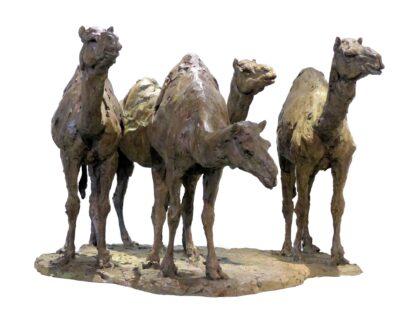 Quatre dromadaires à Doha 59,5x135x87